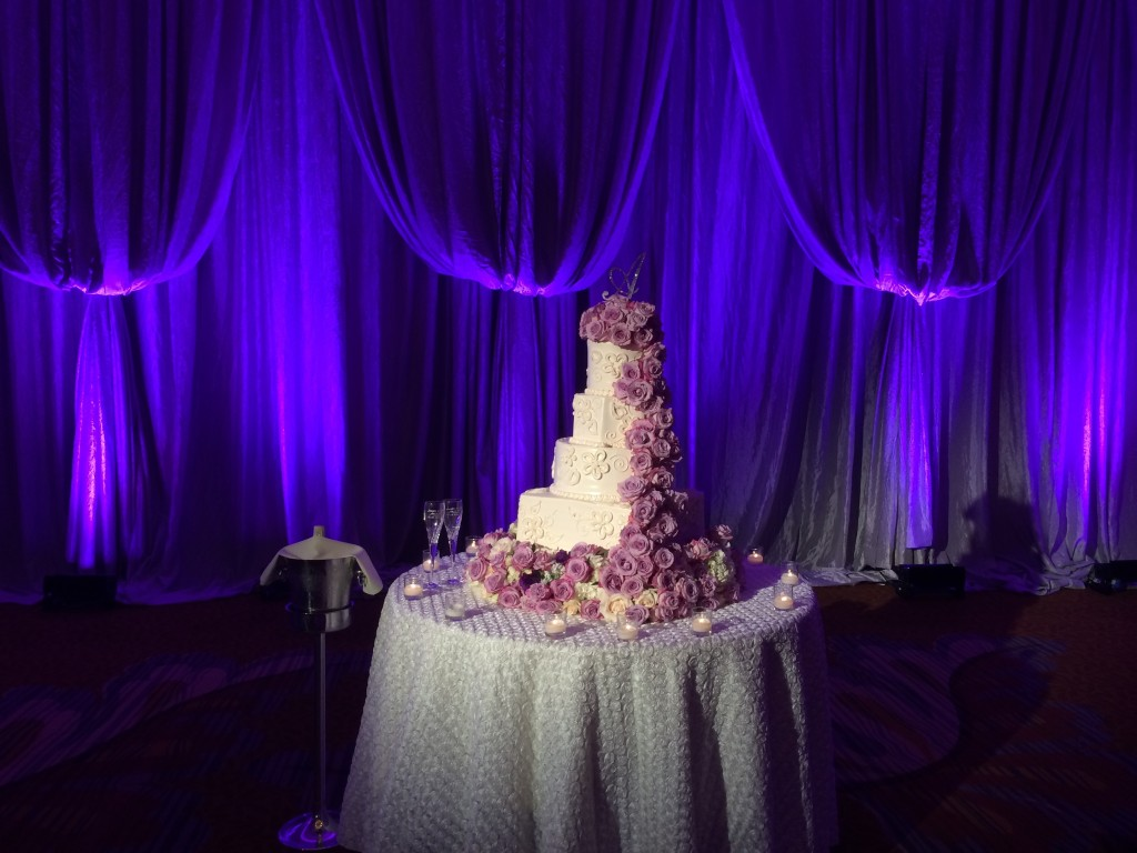 Westin Stonebriar Cake with Purple Uplighting